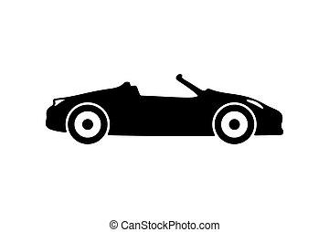 αγωνιστικό αυτοκίνητο , περίγραμμα