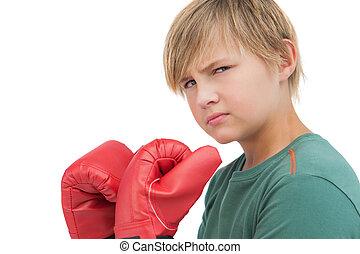 αγόρι , γάντια , ακράτητος , πάλη