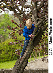 αγόρι , δέντρο , νέος , αγαπώ , παράρτημα