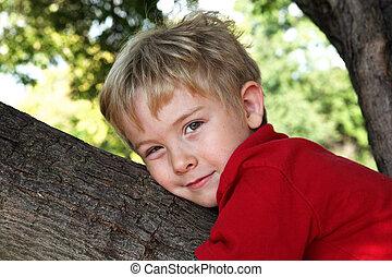 αγόρι , δέντρο , νέος , αγαπώ