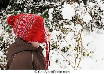 αγόρι , μικρός , χιόνι , γλείψιμο , παράρτημα