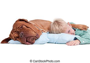 αγόρι , σκύλοs , πάτωμα