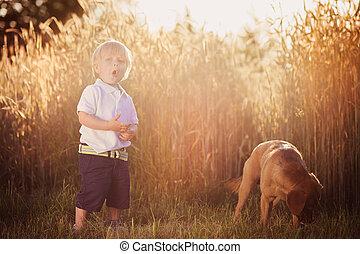αγόρι , σκύλοs , πεδίο