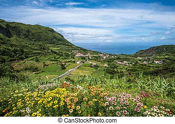 αζόρες , πορτογαλία , νησί , flores, πράσινο , ακτογραμμή