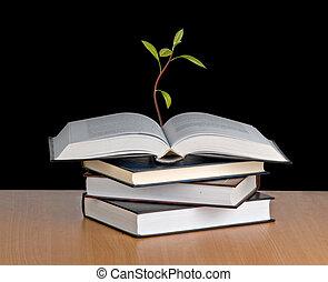 ακμάζω , ανοίγω , δενδρύλλιο , αβοκάντο , βιβλίο