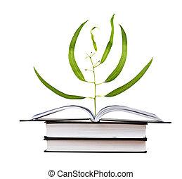 ακμάζω , βιβλίο , δέντρο , νεαρό φυτό