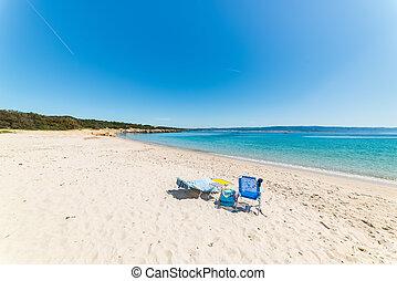 ακρογιαλιά έδρα , επάνω , ένα , αδειάζω , παραλία