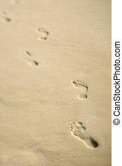 ακτογραμμή , με , footprints.