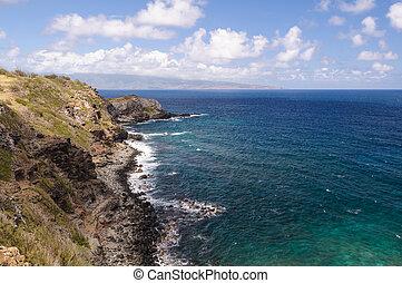 ακτογραμμή , hawaiian