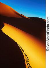 αλγερία , αμμόλοφος , ανατολή , άμμοs , sahara άγονος