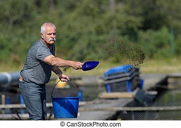 αλιευτικός , σίτιση , γέροντας