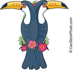 αλφάβητο , οπωροφάγο πτηνό με μέγα ράμφο , ζώο