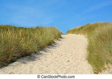 αμμόλοφοι , άμμοs , τοπίο