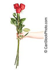 ανάμιξη αμπάρι , τρία , τριαντάφυλλο