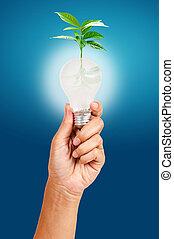ανακαινίσιμος δραστηριότητα , και , περιβάλλοντος διατήρηση , concept.