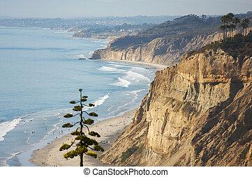 ανανάς , torrey, παραλία , ακτογραμμή