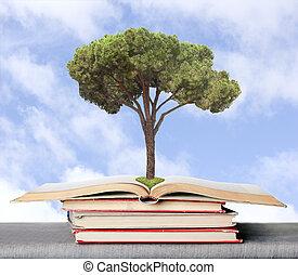 αναπτύσσομαι , γνώση , symbolizing, ?oncept