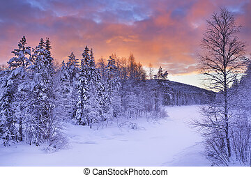 ανατολή , πάνω , ένα , ποτάμι , μέσα , χειμώναs , κοντά , levi, φινλανδικός , λαπωνία
