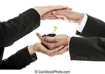 ανδρικός και γυναίκα , αρμοδιότητα ανάμιξη , κράτημα , και , προασπίζω , καινούργιος , πράσινο , βλαστάνω , μέσα , ένα , πρέζα , από , έδαφος