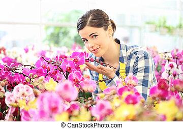 ανθοπώλης , γυναίκα , λουλούδια , ευχές