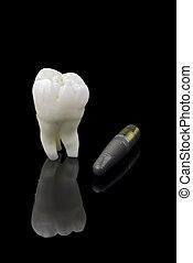 ανθρώπινος , δόντι , και , τιτάνιο , εμφυτεύω