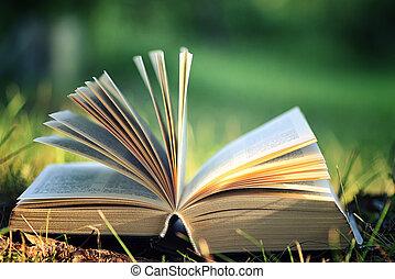 ανοιχτό βιβλίο , με , λουλούδι , επάνω , γρασίδι