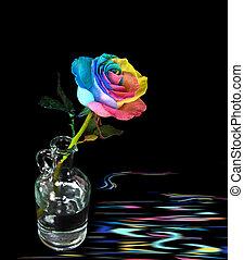 αντίκα , ουράνιο τόξο , μπουκάλι , τριαντάφυλλο