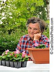 ανώτερος γυναίκα , - , κηπουρική
