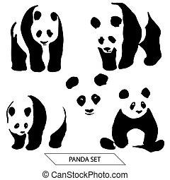 απεικονίζω σε σιλουέτα , θέτω , αρκτοειδές ζώο της ασίας