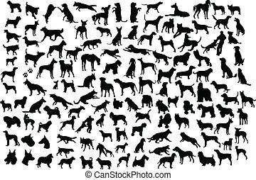 απεικονίζω σε σιλουέτα , σκύλοs