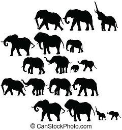 απεικονίζω σε σιλουέτα , φόντο , ελέφαντας
