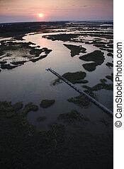 αποβάθρα , ακτοπλοϊκός , wetland.