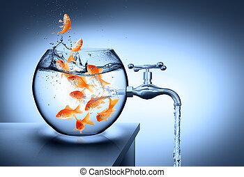 αποτυχημένος , νερό , - , άνυδρος , ριψοκινδυνεύω