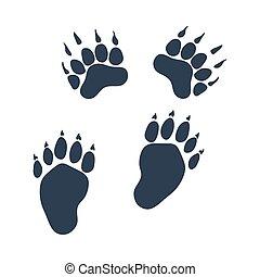 αρκούδα , ακολουθώ ίχνη , εικόνα