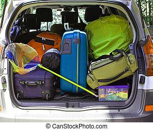 αρπάζω , αποσκευέs , αυτοκίνητο , ψάρεμα , κιβώτιο , έτοιμος , αλιεύω