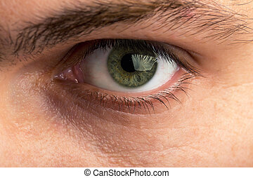 αρσενικό , μάτι