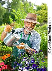 αρχαιότερος , κηπουρική , άντραs