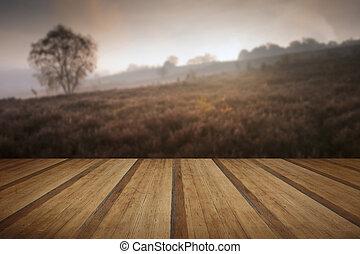 ασαφής , φά , ξύλινος , φθινόπωρο αναδασώνω , ομιχλώδης , χαράζω , επενδύω δι , τοπίο