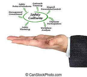 ασφάλεια , μόρφωση