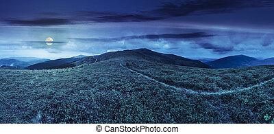 ατραπός , ανάμεσα , ο , γρασίδι , επάνω , βουνοκορφή , τη νύκτα