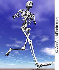 ατσάλι , τρέξιμο , σκελετός