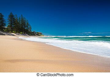 αυστραλία , τμήμα , ηλιόλουστος , εγκατέλειψα , dicky, ημέρα...