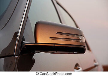 αυτοκίνητο , ανατρέφω αντίκρυσμα του θηράματος αντανακλώ