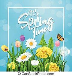αυτό είναι , άνοιξη , time., όμορφος , λιβάδι , λουλούδια , επάνω , γαλάζιο φόντο