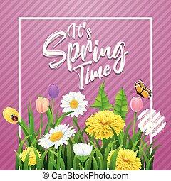 αυτό είναι , άνοιξη , time., όμορφος , λιβάδι , λουλούδια , επάνω , ραβδωτός , βασιλαρχία φόντο