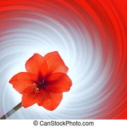 αφαιρώ , λουλούδι , αριστερός φόντο