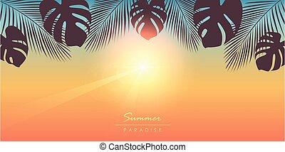 βάγιο , παράδεισος , ηλιόλουστος , φόντο , καλοκαίρι , τροπικός , φύλλα