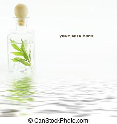 βάζο , με , φρέσκος , φύλλα , (spa, concept)