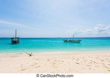βάρκα , κοντά , ένα , παραλία , αγκυροβόλησα