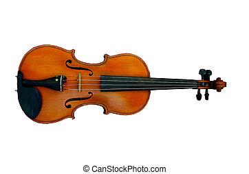 βιολί , απομονωμένος